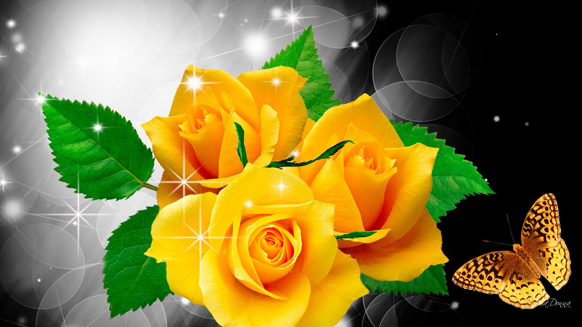 Beautiful Rose Flowers Pictures And Wallpapers69 Rose Flowers Yellow Roses Rose Wallpaper Rose
