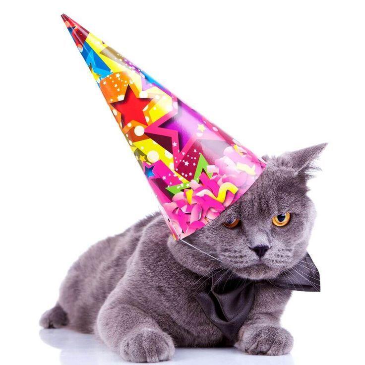 Alles Gute Zum Geburtstag Wünscht