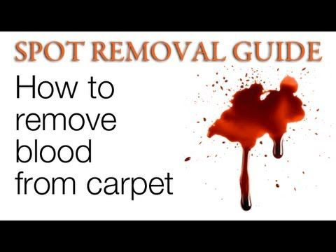 How To Get Blood Out Of Carpet Blood Stain Removal