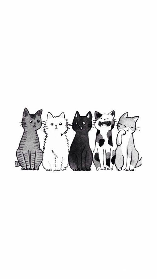 Wallpaper Uploaded By Nk On We Heart It Cat Wallpaper We Heart It Wallpaper Cute Cat Wallpaper