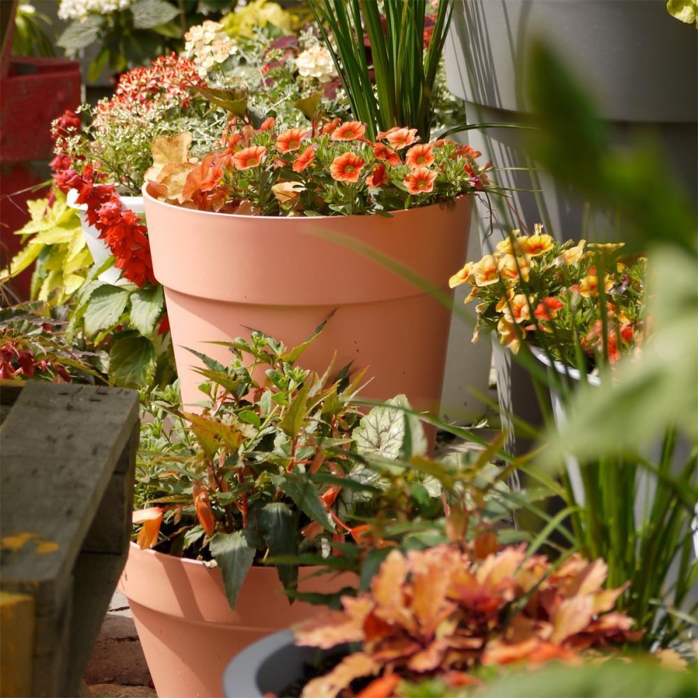 ein topfgarten voller ideen k belpflanzen pinterest garten topfgarten und balkon. Black Bedroom Furniture Sets. Home Design Ideas