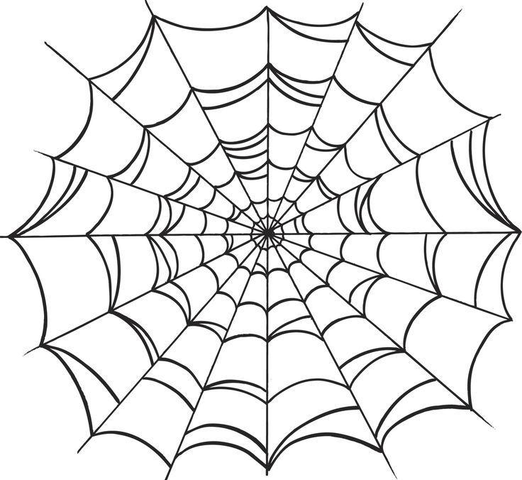 spiderweb drawing - Google Search                              …