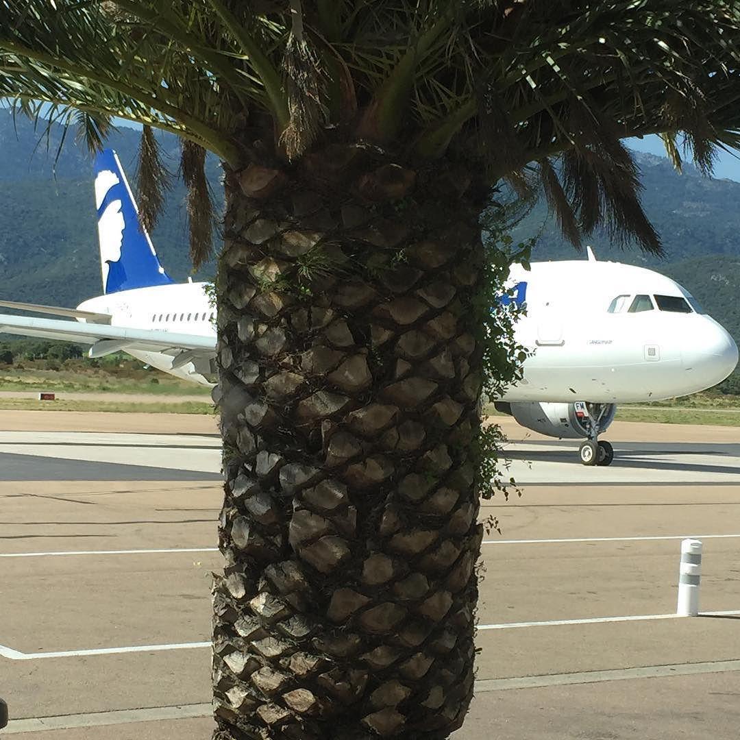 Un air de vacances à #Figari #Sud #Corse  #A320 #airline #airport #airportlife #summer2016 #paradise  #sun  #beach