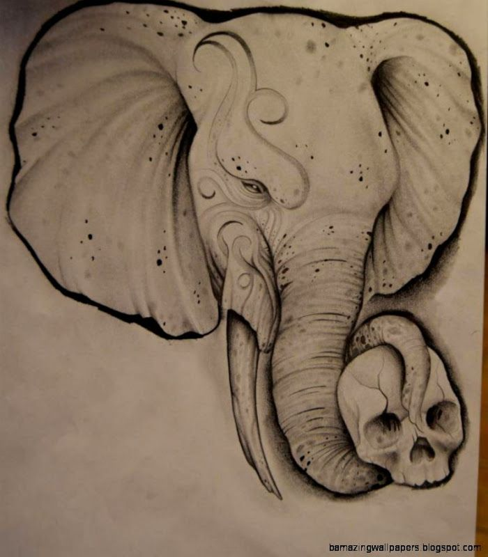 Tumblr Drawing Elephant Kids Coloring Page