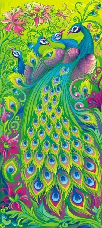 8) fav pin on 8th board  - peacock #art #chasingrainbows