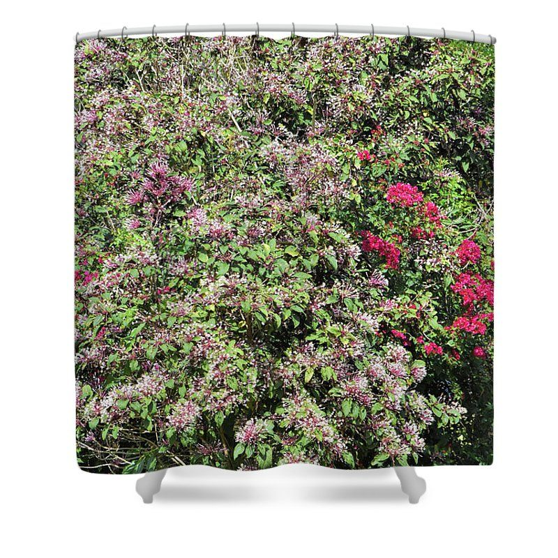 Reminds Me Of Lilacs Shower Curtain For Sale By William