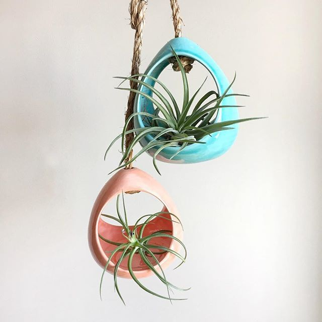 air plant holder,  air plant hanger,  open air plant,  air plant terrarium, air plant gift,  airplant terrarium,  tillandsia,  ceramic planter,  plant décor,  airplant,  air planter,  air plant,  tillandsia holder