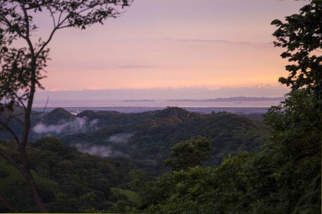 Vista del atardecer de la costa tropical... | Free Photo #Freepik #freephoto #arbol #viajes #nube #naturaleza