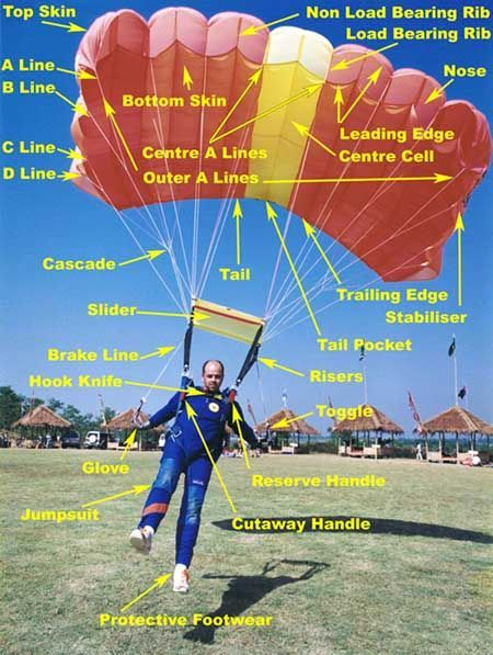 Parachuting Equipment | Skydiving, Skydiving equipment ...
