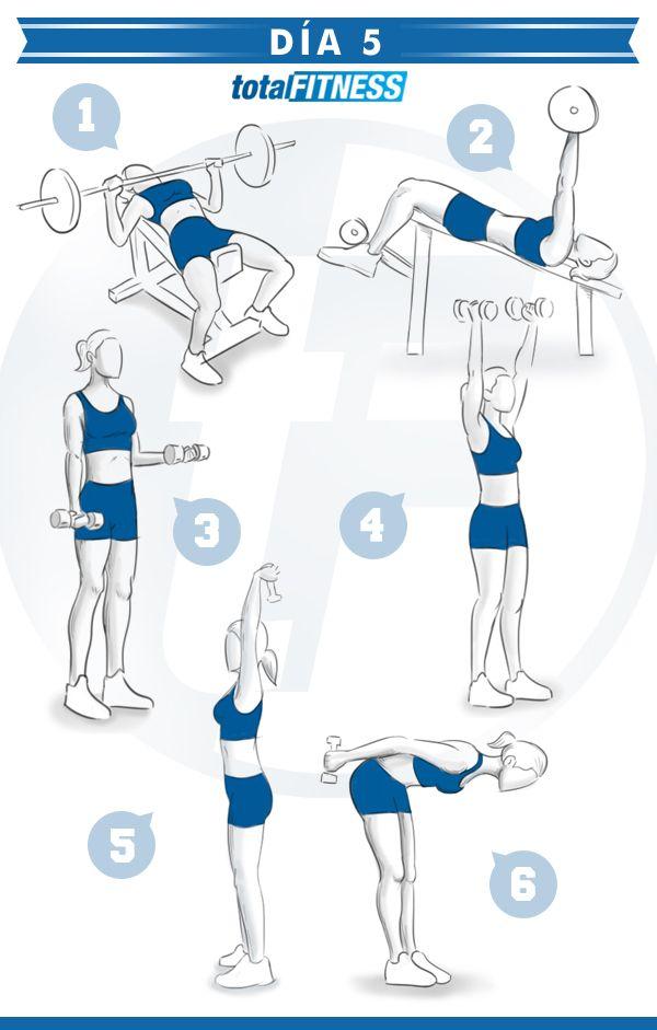 Entrenamiento detallado para 5 d as a la semana para for Ejercicios de gym