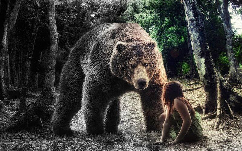 Scary bear | Comics e ilustración. | Pinterest | Scary, Bears and ...
