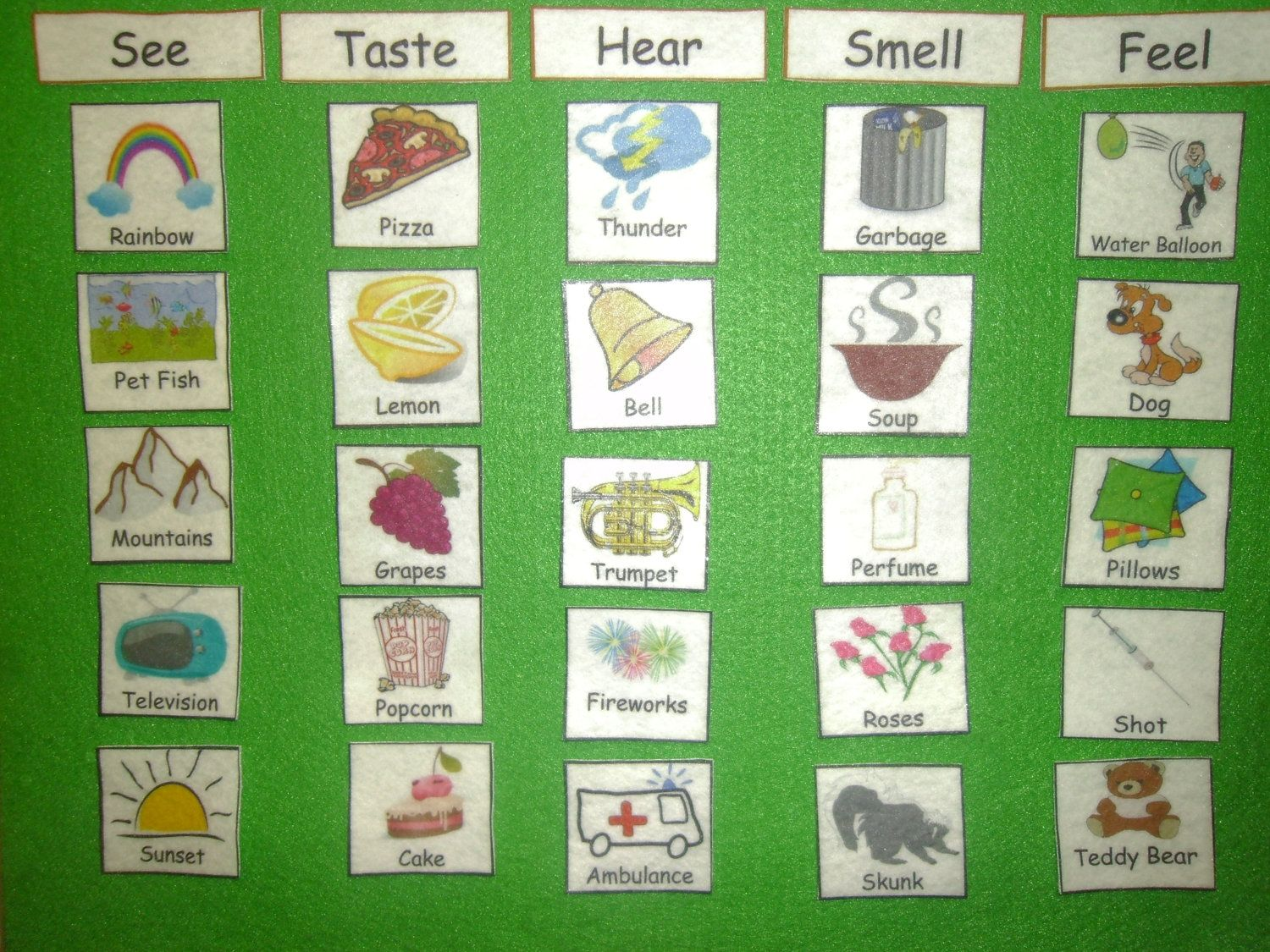 Felt Board Set 5 Senses Match English Spanish Or Dual By Ambrcoop 4 99