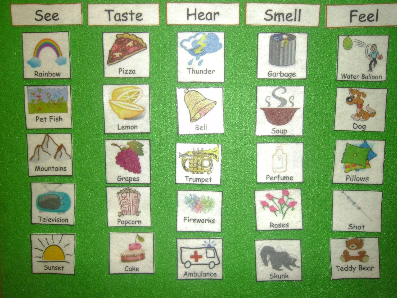 Felt Board Set 5 Senses Match English Spanish Or Dual By