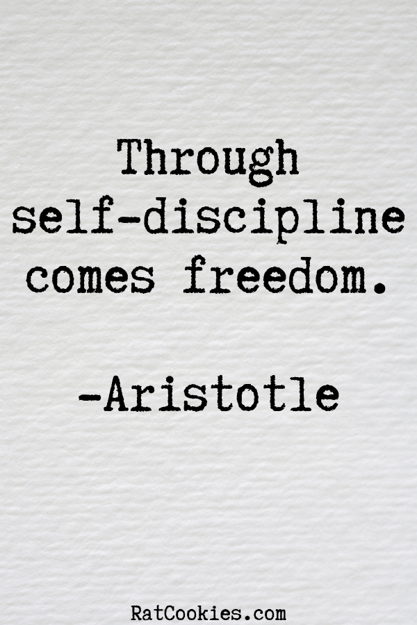 63 Self-Discipline Quotes To Help You Keep Going - Rat Cookies