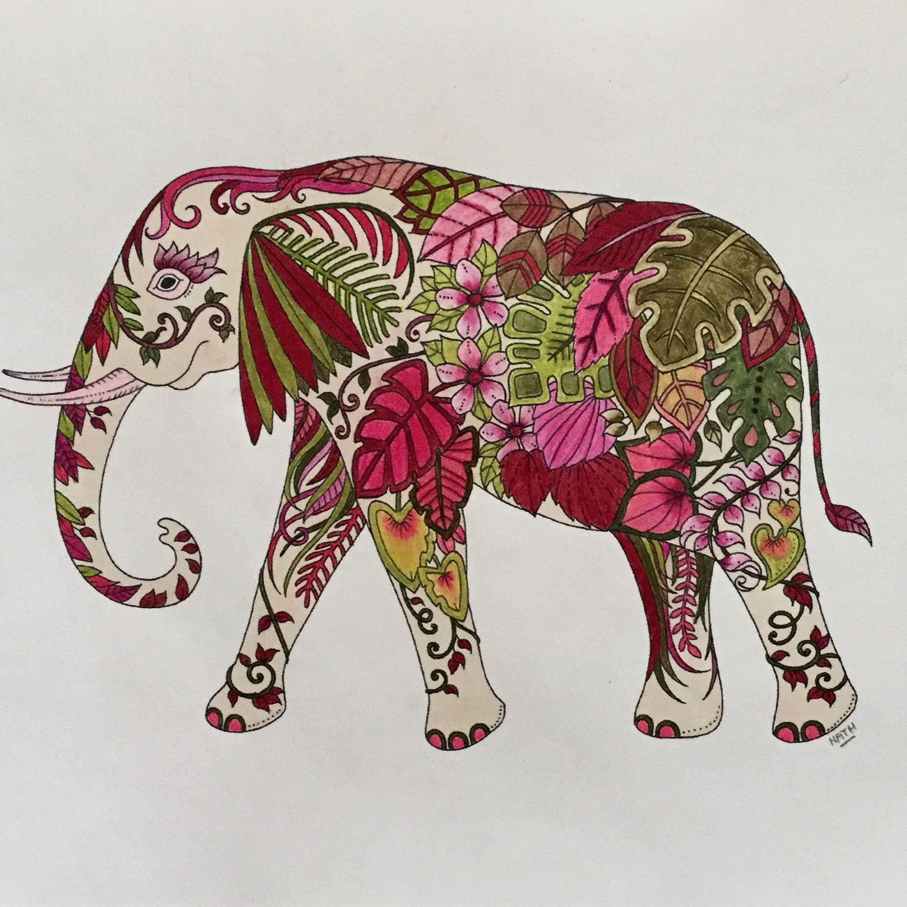 My Coloring Johanna Basford Magical Jungle Elephant Drawing