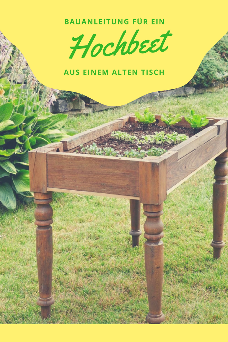 Garten Hochbeet Garten Neben Den Klassischen Hochbeeten Gibt Es Auch Die Sogenannten Tischbe In 2020 Raised Garden Beds Diy Raised Garden Backyard Landscaping Designs