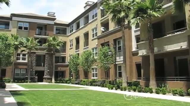 Main Street Village Apartments For Rent In Irvine California Apartment Rental And Community Detai California Apartment Irvine California Apartments For Rent