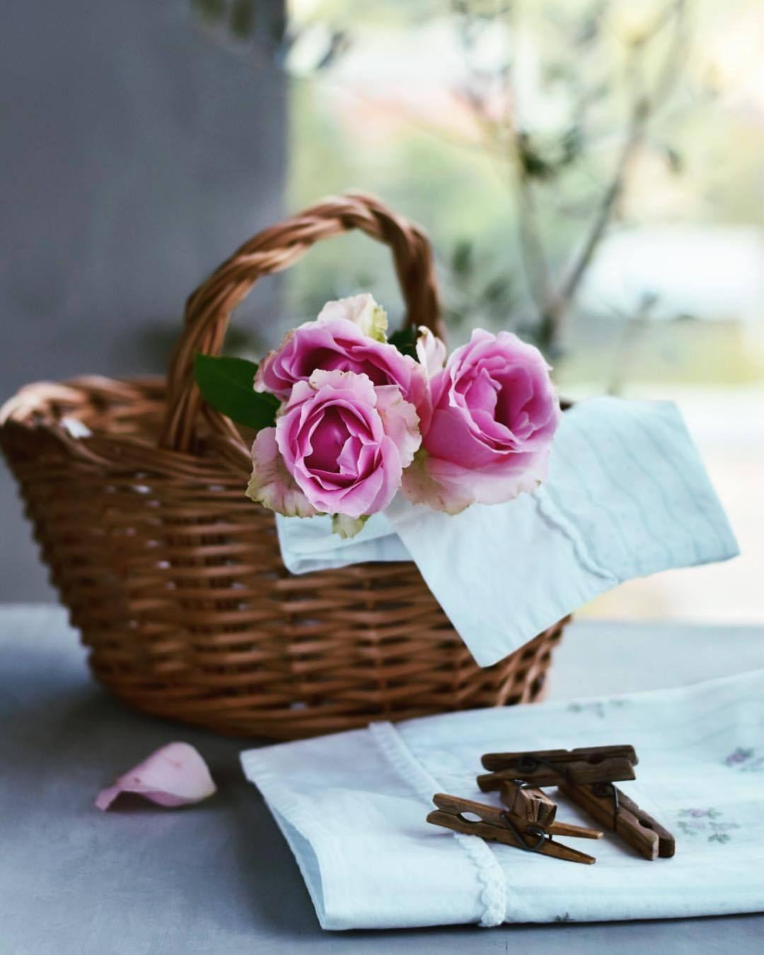 Soul Of An Angel Perfumes C Lardecoramado Raindrops And Roses Beautiful Flowers Perfume