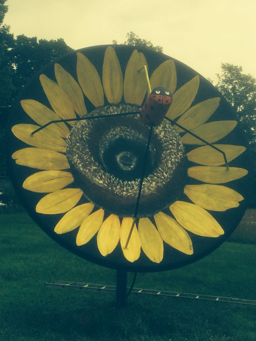 huge sunflower made out of old large satelite dish garden art