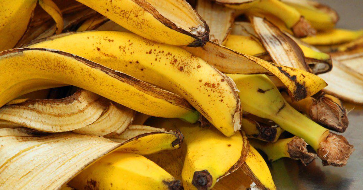 bananenschalen als d nger verwenden garten pinterest garden banana and plants. Black Bedroom Furniture Sets. Home Design Ideas