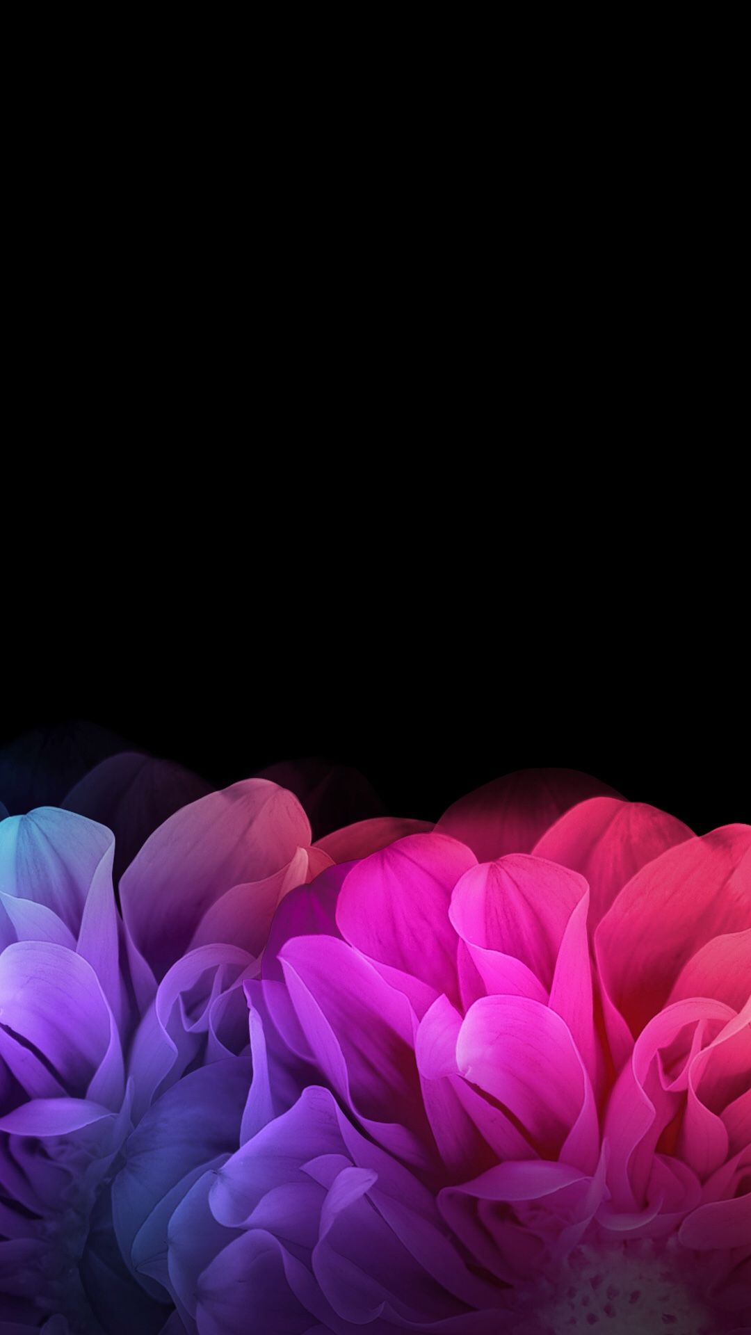 Black Floral Iphone Wallpaper Phone Backgrounds Floral Wallpaper