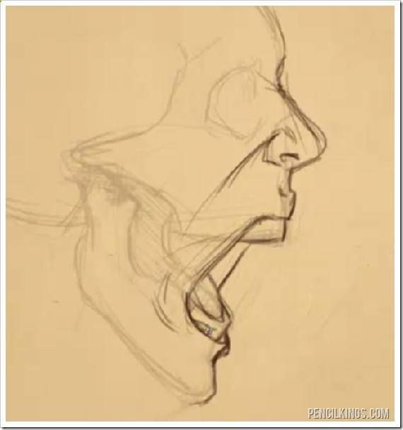 Drawing A Screaming Mouth Adding Skin Arte De Anatomia Humana Arte Del Bosquejo Arte De Anatomia