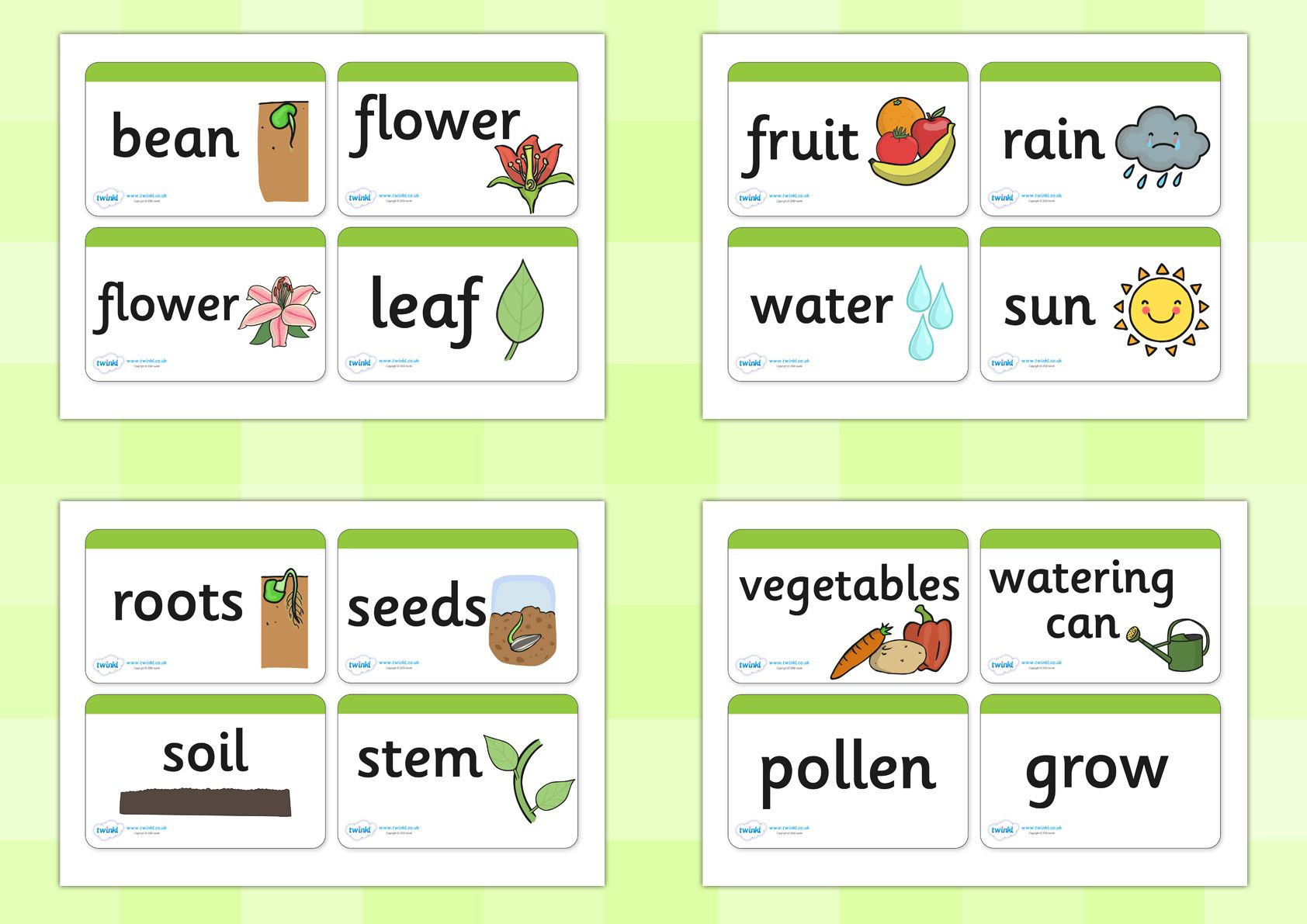 Twinkl Resources Gt Gt Plant Growth Topic Word Cards