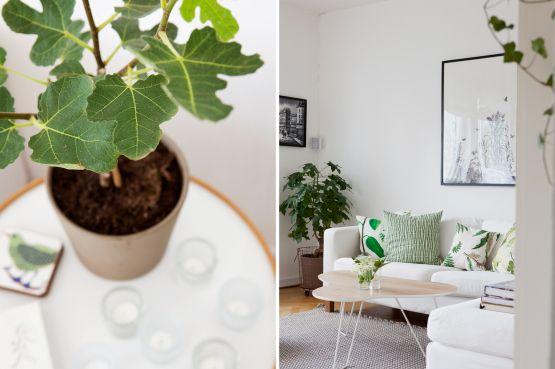 Decorar con plantas y motivos florales