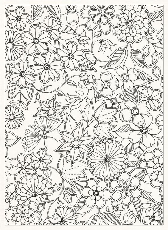 Secret Garden 20 Postcards Amazon Co Uk Johanna Basford Books Flower Coloring Pages Coloring Pages Coloring Books