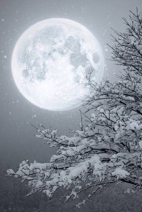 Full Moon in Winter ~ wow ?? PS.