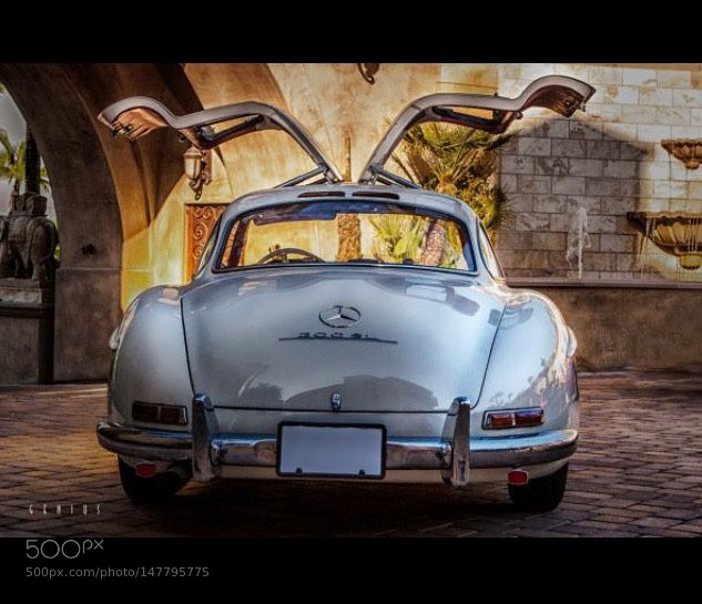 The Gullwing by Geniuss