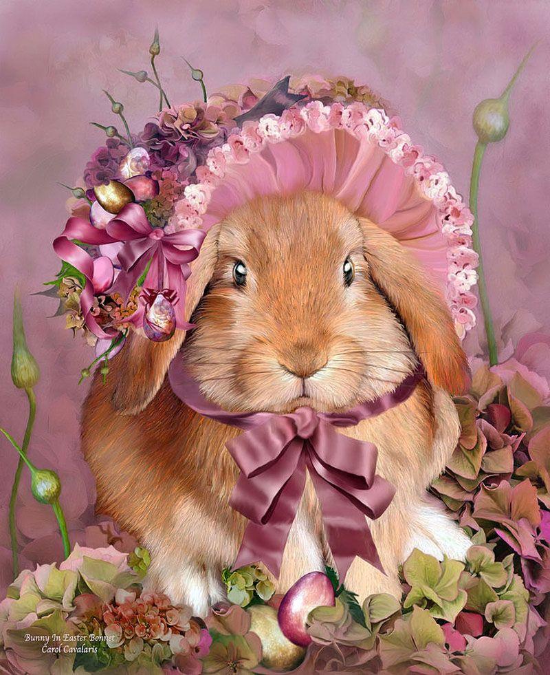 картинка зайчика с розой находится как