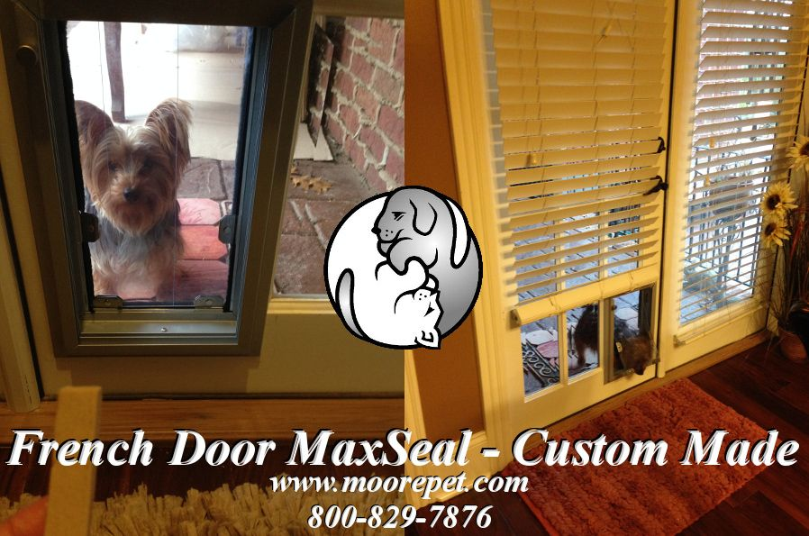 Security Boss Manufacturing Custom Makes The Maxseal Pet Door For