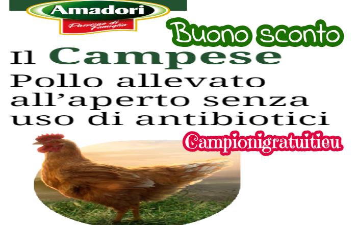 Buono sconto Amadori su pollo Campese