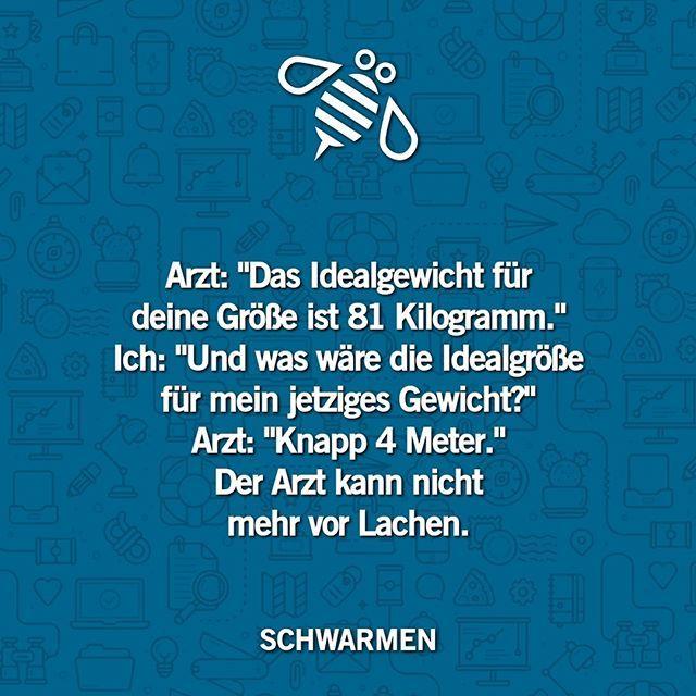 """SCHWARMEN on Instagram: """"Folge @SCHWARMEN für mehr."""""""