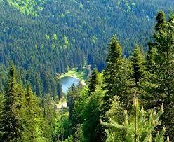 çangal dağları -