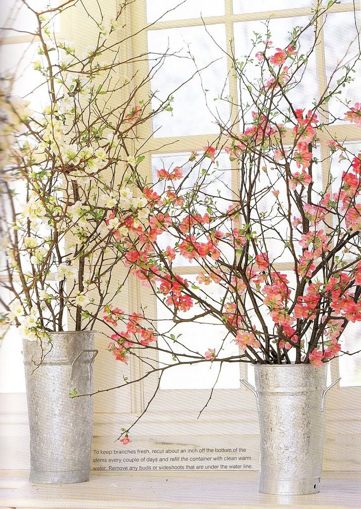 These arrangements of flowering quince branches to