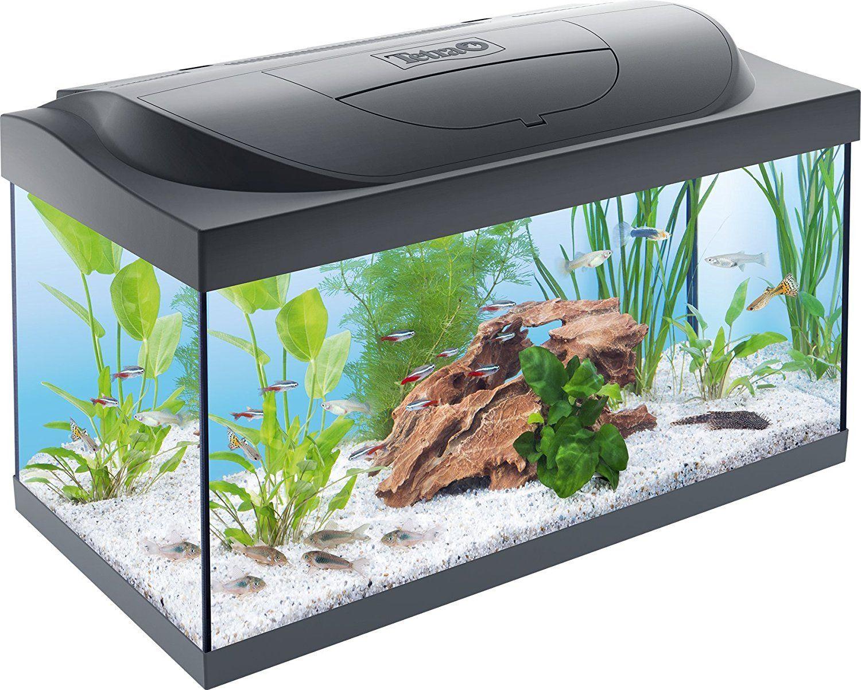 Tetra Starter Line Aquarium Led Einsteigeraquarium Komplettset Mit Led Beleuchtung 54l Aquariensets Fur Einstei Tetra Aquarium Aquarium Aquarium Einrichten