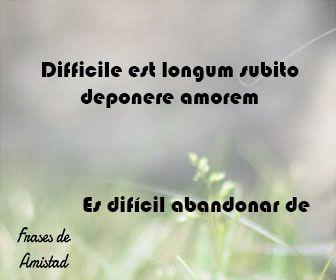 Frases De Amistad En Latin Frases De Amistad