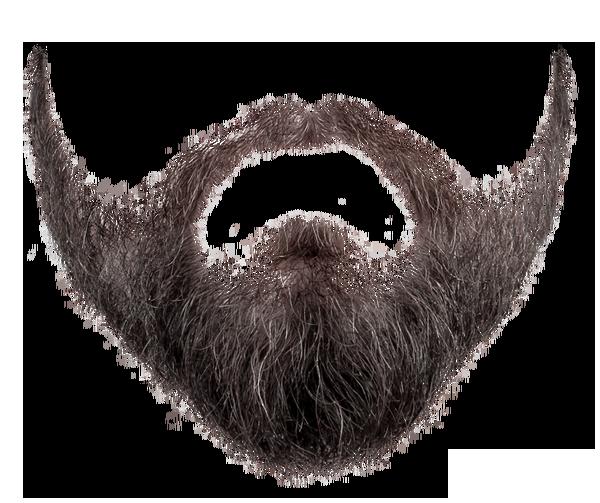 Free Beard Clipart 1 Page Of Public Domain Clip Art 2 Image 18779 Beard Vector Hair Png Beard Images