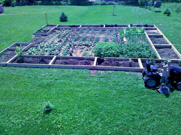 gardenpic2