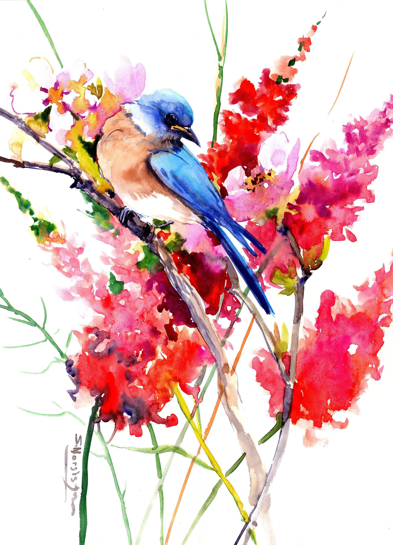 Pin On Watercolor Birds
