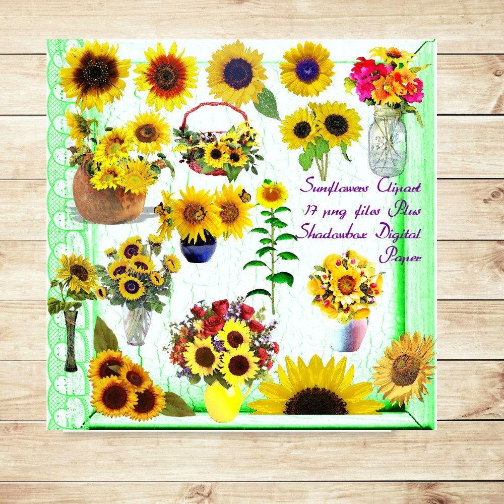 Sunflower Clipart 17 png files 300 dpiInvitations Garden Tea Party ...