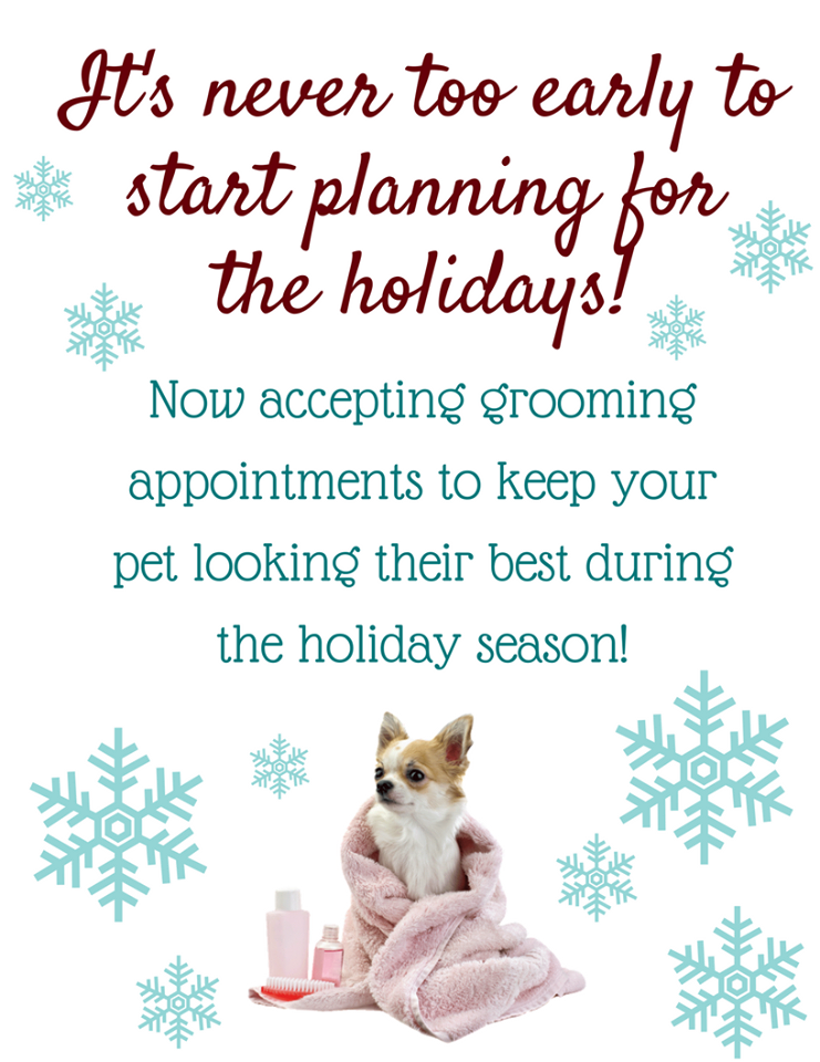 We Are Taking Appointments Now Call Us At Woof Gang Bakery Ironhorse 913 730 8420 Your Pet