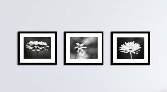 Black and White Flower Photography Set, Three Floral Prints, 11x14 ...