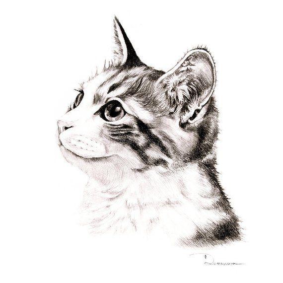 51f76926e6d3 Custom cat portrait commission cat painting pencil drawing of cat memorial cat  portrait gift idea