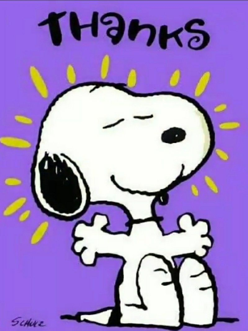 Pin By Sybille Strauss On Tazas Snoopy Love Snoopy Birthday Snoopy Pictures