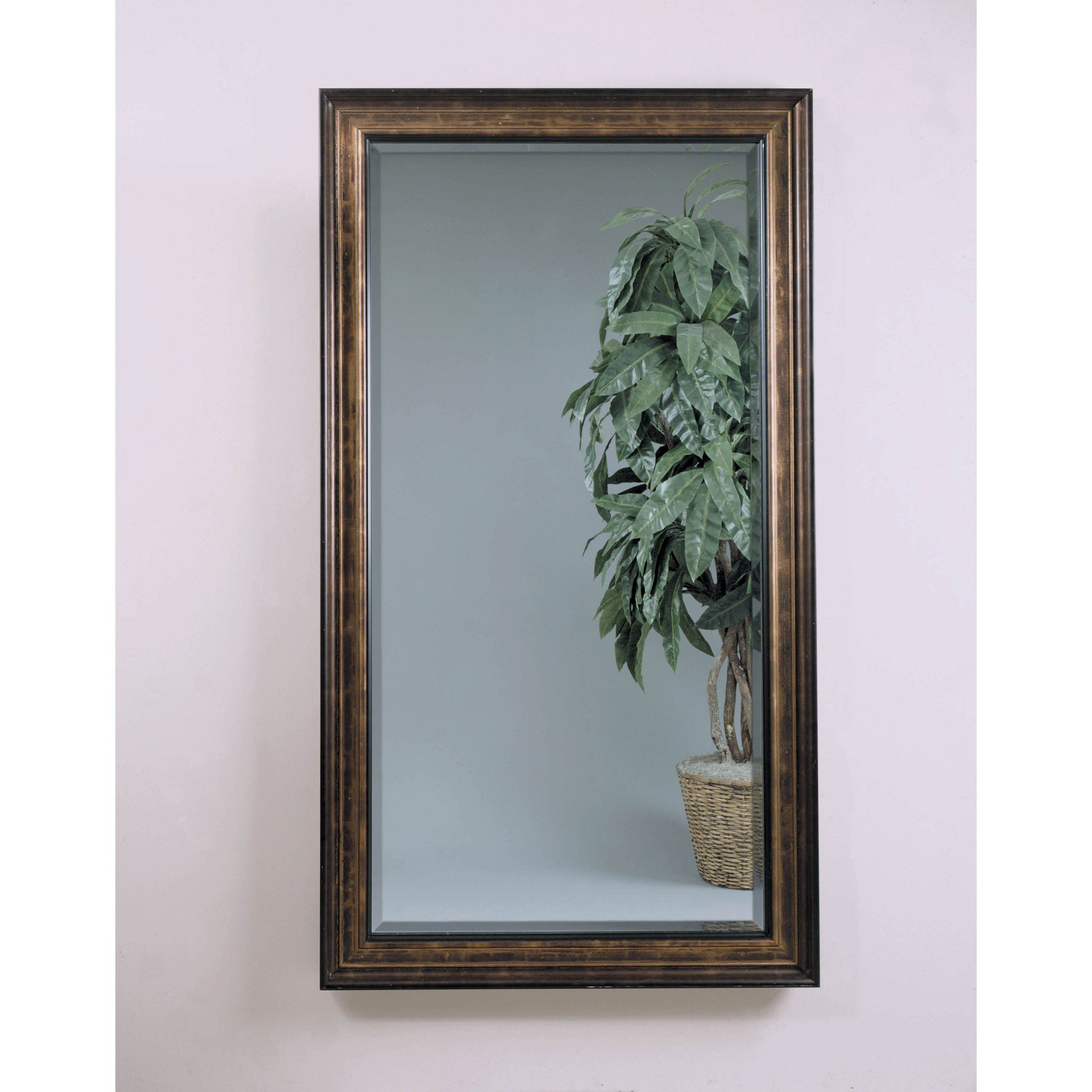 Calista Leaning Wall Mirror  45W X 805H In