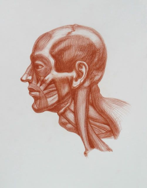 Michael M. Hensley: Master Draftsman of The Human Form, Artistic ...