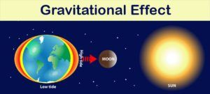 Our lunar gardening calendar is based on the gravitational effects of the moon.